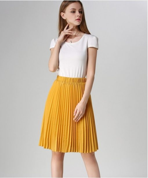European Style Elegant Pleated Skirt for Spring & Autumn 2018 4